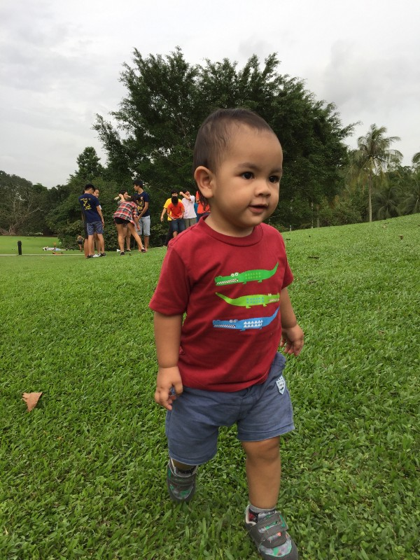 Our toddler enjoying the Singapore Botanic Gardens